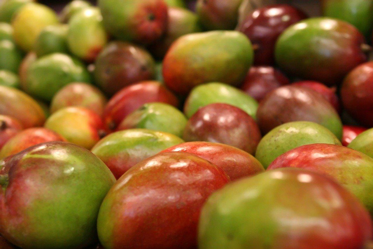 Les bienfaits exceptionnels de la mangue que vous devez savoir